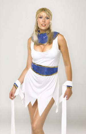 Cleopatra Dress Costume ( Reduced even Further )